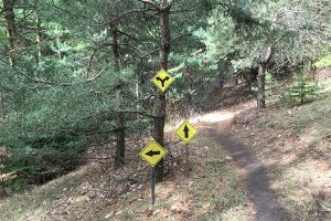 Trail markers during the Fork in the Road race.
